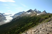 Hike to Parker's Ridge - view of Saskatchewan Glacier