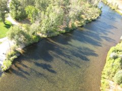 Floaters on the Boise River