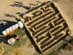 Linder Farms - Mini Maze